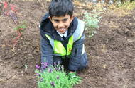 PUPILS DIG DEEP TO HELP FINISH NEW SCHOOL BUILDING WITH G F TOMLINSON