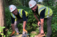 The hedgehogs move in:   G F Tomlinson continues to protect local wildlife